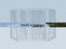 http://maureenconnor.net/files/gimgs/th-17_fresh_windows.jpg